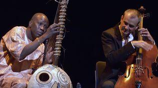 Ballaké Sissoko et Vincent Segal, un duo en osmose totale, le 9 septembre 2015 au festival Jazz à la Villette  (Edmond Sadaka / Sipa)
