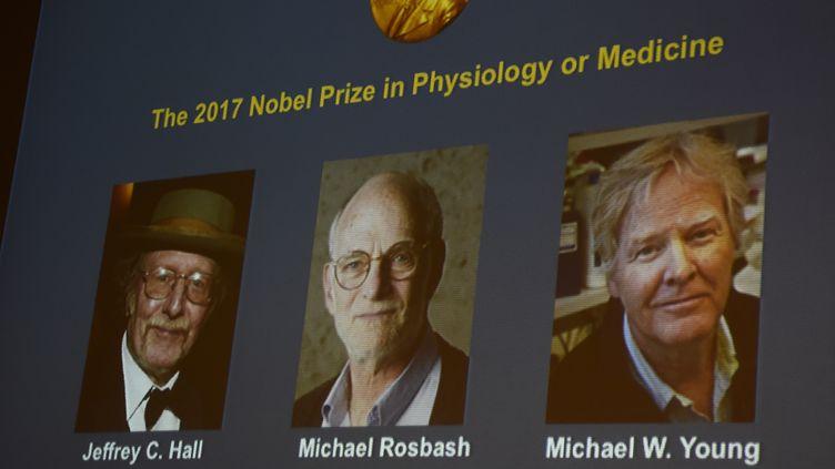 Les photos deJeffrey C. Hall, Michael Rosbash et Michael W. Young, lors de l'annonce du prix Nobel de médecine, le 2 octobre 2017 à Stockholm (Suède). (JONATHAN NACKSTRAND / AFP)