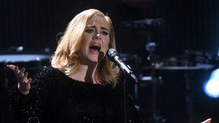 Adele sur scène à Huerth, en Allemagne, le 6 décembre 2015  (Henning Kaiser / AFP)