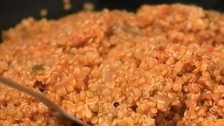 Agriculture : le succès du quinoa d'Anjou (FRANCE 2)