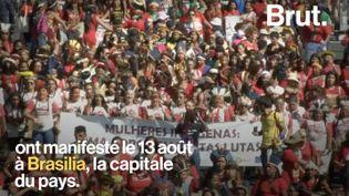 VIDEO. Au Brésil, des femmes indigènes protestent pour défendre leurs terres et leurs droits (BRUT)