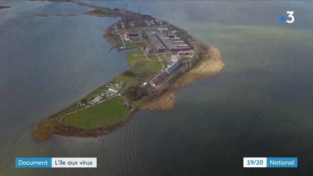 Allemagne : l'île au virus, l'endroit le plus dangereux d'Europe