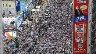 Les organisateurs estiment à plus d'un demi-million le nombre de manifestants dans les rues de Hong Kong, le 9 juin 2019. (DALE DE LA REY / AFP)