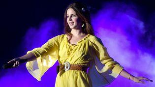 La chanteuse Lana Del Rey continue de ravir et de surprendre en 2018.  (C Flanigan / Wireimage / Getty Images)