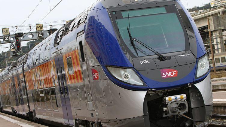 De nouvelles rames de TER en gare de Nice (Alpes-Maritimes), le 27 janvier 2015. (MAXPPP)