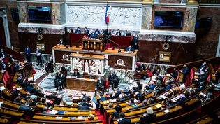 L'hémicycle de l'Assemblée nationale, le 20 juillet 2021 à Paris. (XOSE BOUZAS / HANS LUCAS / AFP)