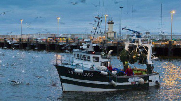 L'Oiseau des tempêtes, bateau de pêche artisanal, rentre de la pêche à la sardine. (PHOTO AFP / JEAN-MICHEL SUDRES)