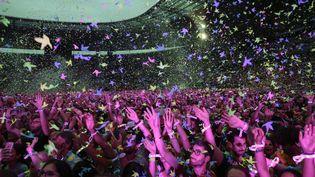 Des fans assistent àun concert du groupe Coldplay, le 15 juillet 2017, au Stade de France, à Saint-Denis (Seine-Saint-Denis). (GEOFFROY VAN DER HASSELT / AFP)