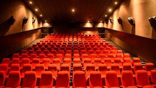 Les lieux culturels, comme les salles de spectacles ou les cinémas,ne pourraient réouvrir qu'en repensant leur organisation de façon stricte. (PRAKASH MATHEMA / AFP)