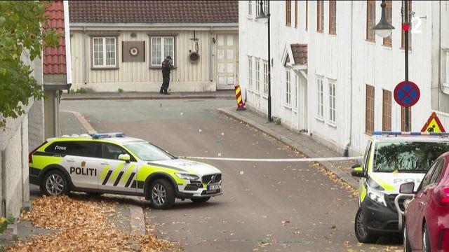 Norvège : une attaque à l'arc et aux flèches a fait cinq morts à Kongsberg