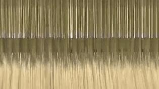 Textile : un secteur qui recrute (France 2)