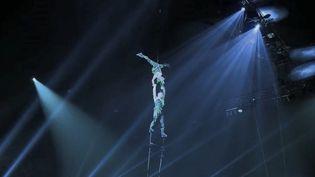 Le cirque Phénix fait le plein à Paris avec des performances éblouissantes. (CAPTURE D'ÉCRAN FRANCE 2)