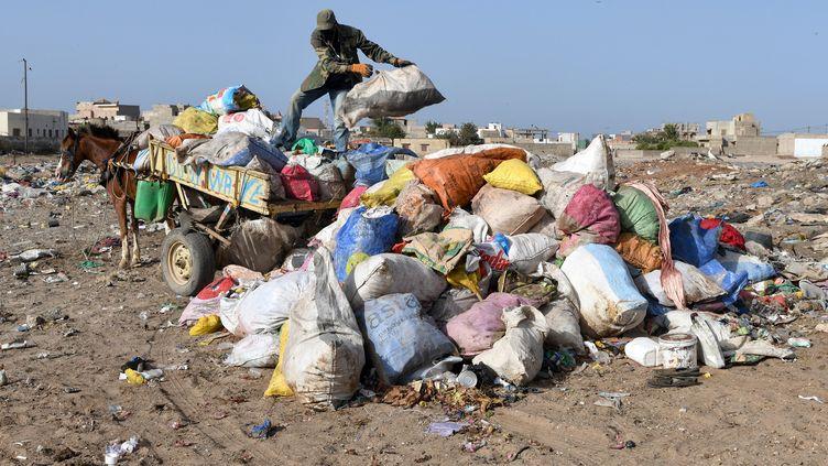 Collecte de sacs à ordures le 31 mai 2019 à Rufisque, près de Dakar. (LIONEL BONAVENTURE / AFP)