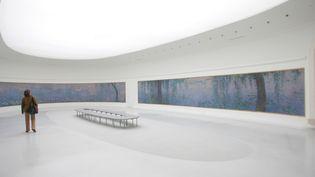 Une femme regarde les Nympheas de Claude Monet au musée de l'Orangerie à Paris, en 2006. (JACQUES DEMARTHON / AFP)