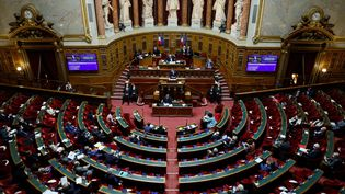 Le Sénat, à Paris le 17 décembre 2020. (THOMAS SAMSON / AFP)