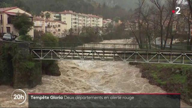 Tempête Gloria : les Pyrénées-Orientales et l'Aude en alerte