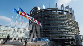 Le Parlement européen à Strasbourg (Bas-Rhin), le 3 avril 2017. (SEBASTIEN BOZON / AFP)