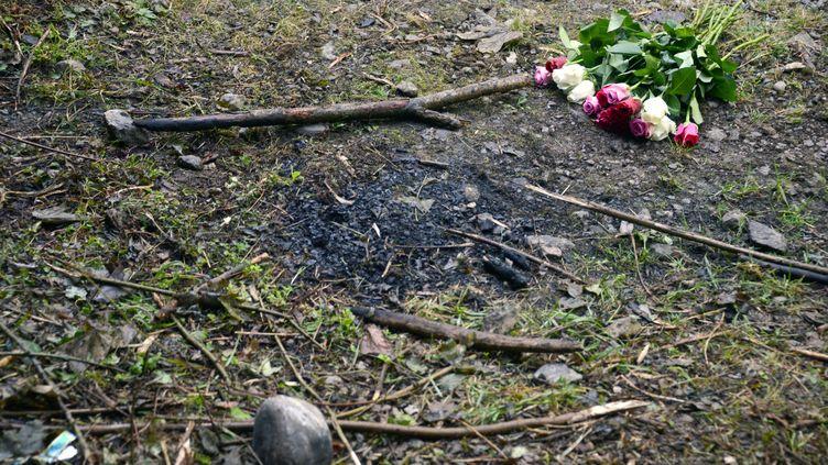 Un bouquet de rose déposé sur le lieu de la tuerie de Chevaline (Haute-Savoie), le 8 septembre 2012. (PHILIPPE DESMAZES / AFP)