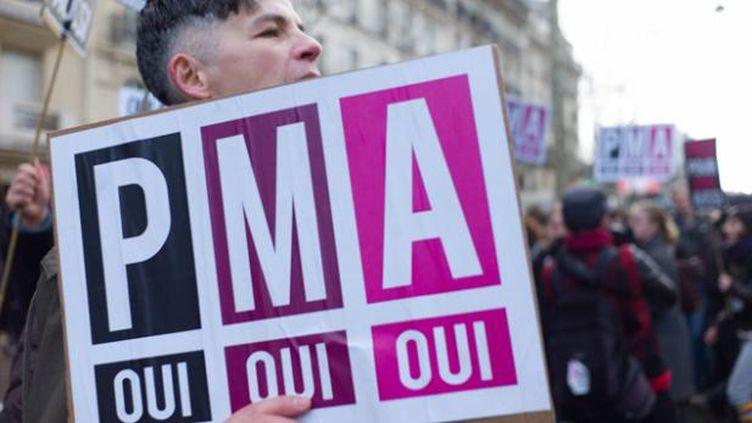 (Plus de 100000 personnes ont manifeste dans les rues de Paris le 24 octobre 2013 pour le passage au parlement du mariage pour tous et de l'accès à l'adoption et à la PMA © Maxppp/Jean Rene Auge/Wostok Press)