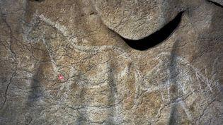 Peintures rupestres dans la cave d'Atxurra, au Pays basque espagnol (24 mai 2016)  (Diputacion foral de Bizkaia / AFP)