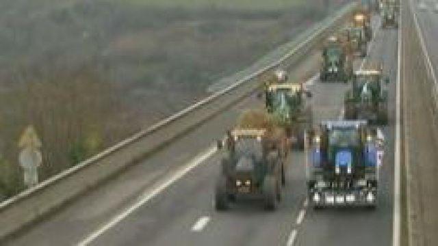 Les éleveurs bretons reprennent leurs actions contre les cours trop bas