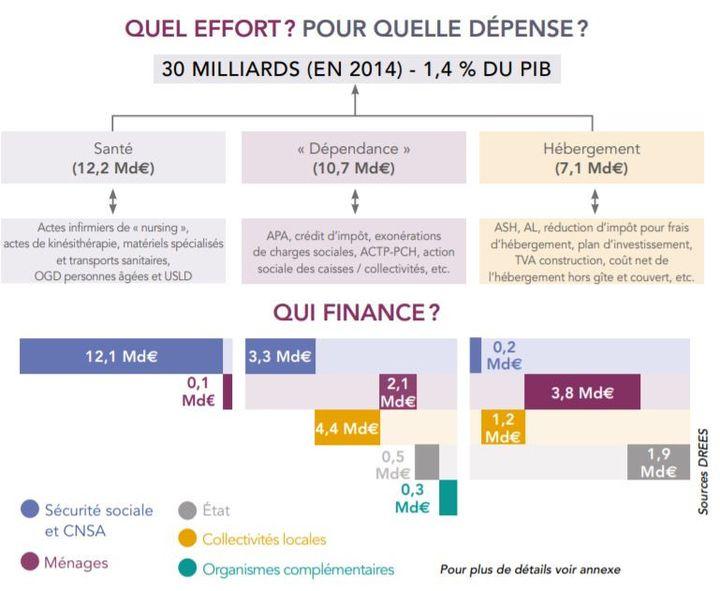 Extrait du rapport Libault (mars 2019) sur le financement des dépenses liées à la dépendance des personnes âgées. (Ministère de la Santé)