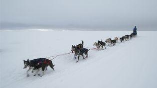 En 2019, la Finnmarkslopet a attiré 110 participants à Alta, en Norvège. (JOHN LOSVAR / AFP)