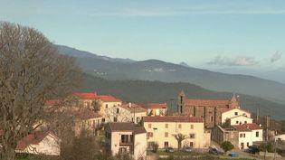 En Corse, le vent souffle moins fort et les Canadair ont pu intervenir pour éteindre les incendies mercredi 12 février. (FRANCE 2)