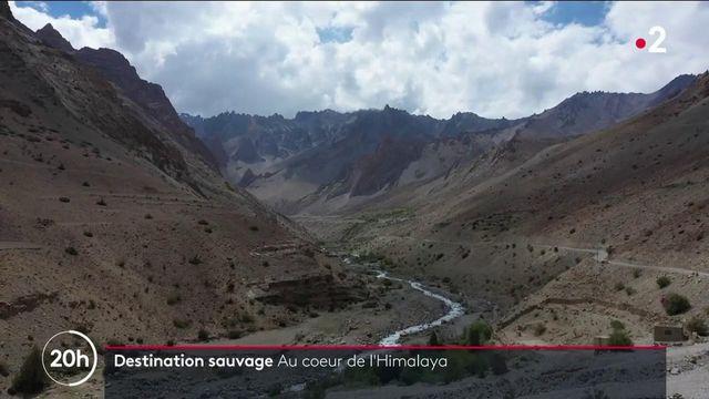 Destination sauvage : à la découverte du Zanskar