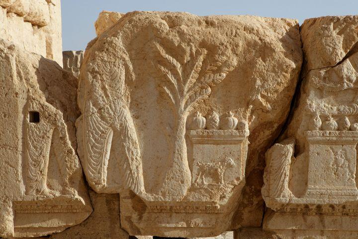 Détail du temple de Bêl, à Palmyre  (Manuel Cohen / AFP)