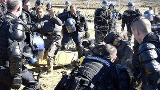 Les forces de l'ordre interviennent lors d'une manifestation d'opposants au barrage de Sivens, en 2015. (PASCAL PAVANI / AFP)