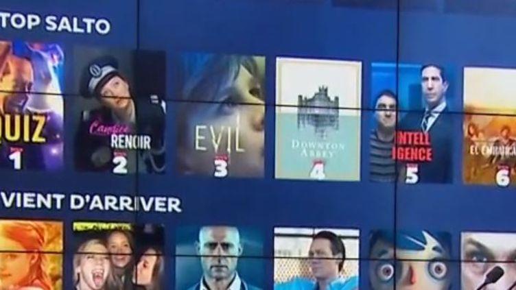 Mardi 20 octobre, les chaînes de télévision françaises ont lancé Salto, une plateforme de vidéo à la demande créée par France Télévisions, le groupe TF1 et le groupe M6. Le journaliste Nicolas Lemarignier fait le point sur le plateau du 13 Heures. (FRANCE 3)