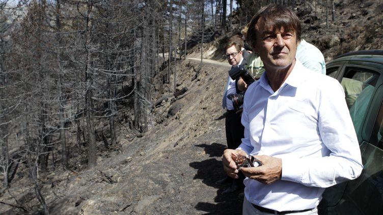 Nicolas Hulot,ministre de la Transition écologique et solidairedans une fôret corse dévastée par un incendie à Palnéca, le 17 août 2017. (PASCAL POCHARD-CASABIANCA / AFP)