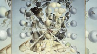Exposition : à Paris, l'énigme Salvador Dali sublimée en lumière (France 2)