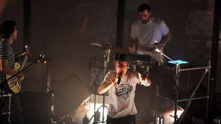 Fauve ≠ en concert à Toulouse en février 2014  (Frédéric Charmeux / Dépêche du Midi / PhotoPQR / MaxPPP)