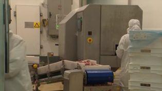 À l'instar de beaucoup de secteurs, le monde agricole redoute un impact économique au Covid-19. Les producteurs de porcs bretons ne peuvent par exemple plus exporter vers la Chine car l'activité maritime est à l'arrêt. (FRANCE 3)