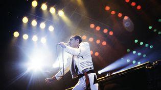 Freddie Mercury au Palais Omnisports de Paris Bercy, le 18 septembre 1984. (JEAN-CLAUDE COUTAUSSE / AFP)