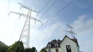 Lignes électriques vers la centrale nucléaire de Flamanville. Le 6 juillet 2006. (MYCHELE DANIAU / AFP)