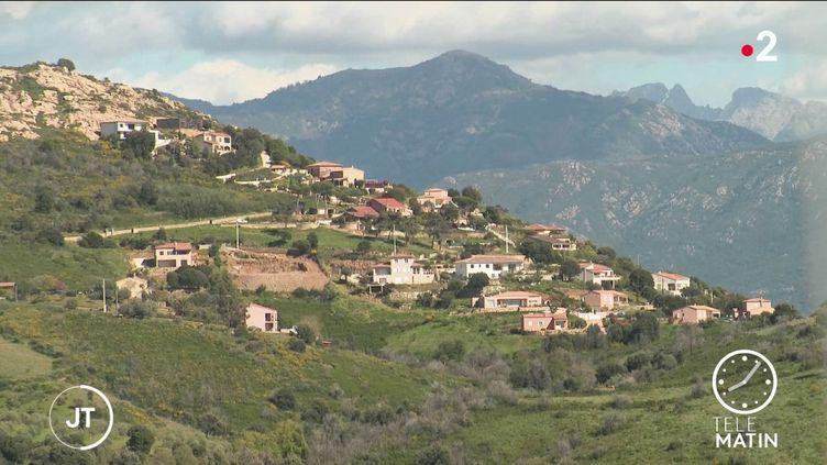 Un paysage de Corse. (France 2)