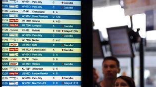 Des passagers s'informent des vols retardés ou annulés, en raison de la grèves des contrôleurs aériens, mardi 11 juin 2013, à l'aéroport de Nice (Alpes-Maritimes). (ERIC GAILLARD / REUTERS)