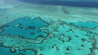 Une vue aérienne de la Grande Barrière de corail en Australie, en novembre 2014. (SARAH LAI / AFP)