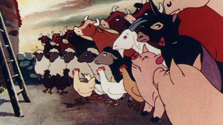 """""""la Ferme des animaux"""" de John Halas et Joy Batchelor (1954)  (Malavida)"""