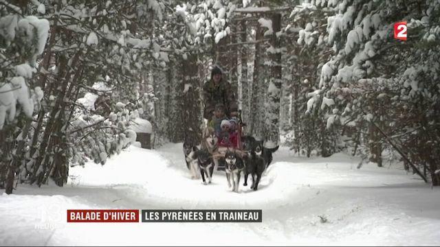Balade d'hiver : les Pyrénées en traîneau
