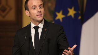 Emmanuel Macron participe à une conférence de presse au Caire (Egypte), le 28 janvier 2019. (LUDOVIC MARIN / AFP)