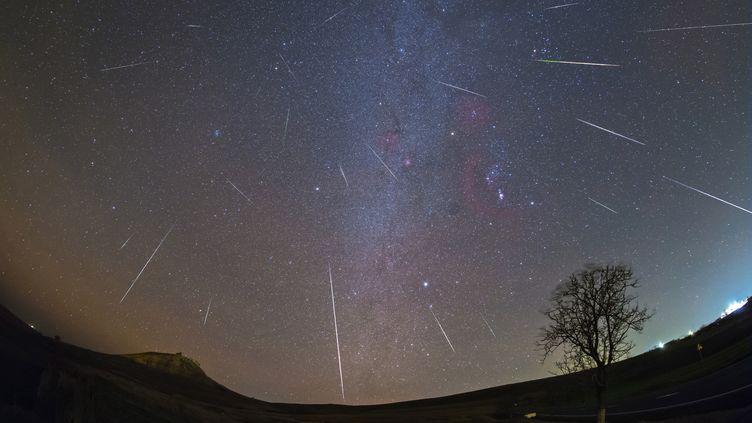 Pluie d'étoiles filantes dans le ciel de Roumanie, le 13 décembre 2017. (ALEX CONU / AFP)