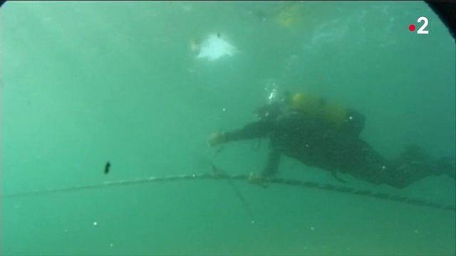 Espionnage : les câbles sous-marins qui auraient permis aux États-Unis d'écouter l'Europe