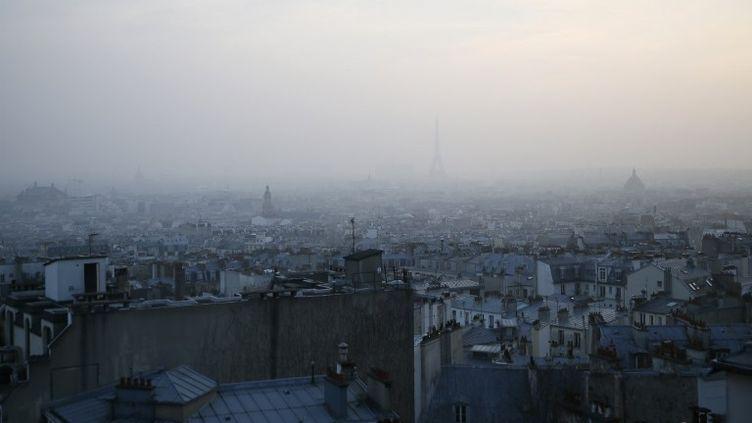 Vue de Paris le 11 mars 2014, en plein pic de pollution. (PATRICK KOVARIK / AFP)