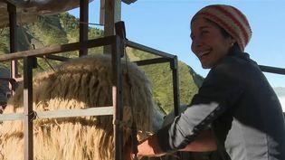 Le métier de berger est l'un des plus vieux du monde, et attire aujourd'hui de plus en plus de jeunes. En France, un berger sur quatre a moins de quarante ans. (CAPTURE ECRAN FRANCE 2)