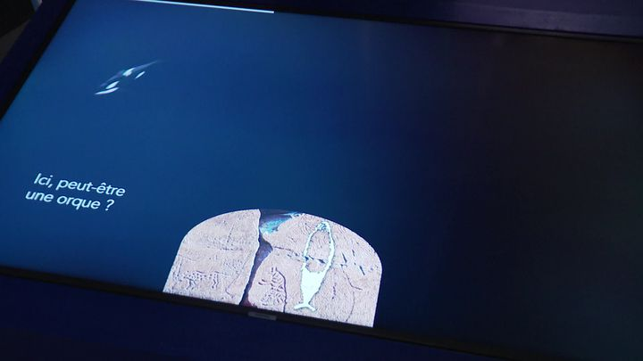 Dispositif immersif de l'exposition Baleine à La rochelle (France Télévisions / France 3 La Rochelle)