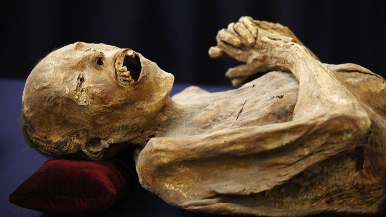 Une femme momifiée est présentée à la presse lors d'une exposition consacrée aux momies de Guanajuato, à Mexico (Mexique), le 31 août 2009. (ELIANA APONTE / REUTERS)